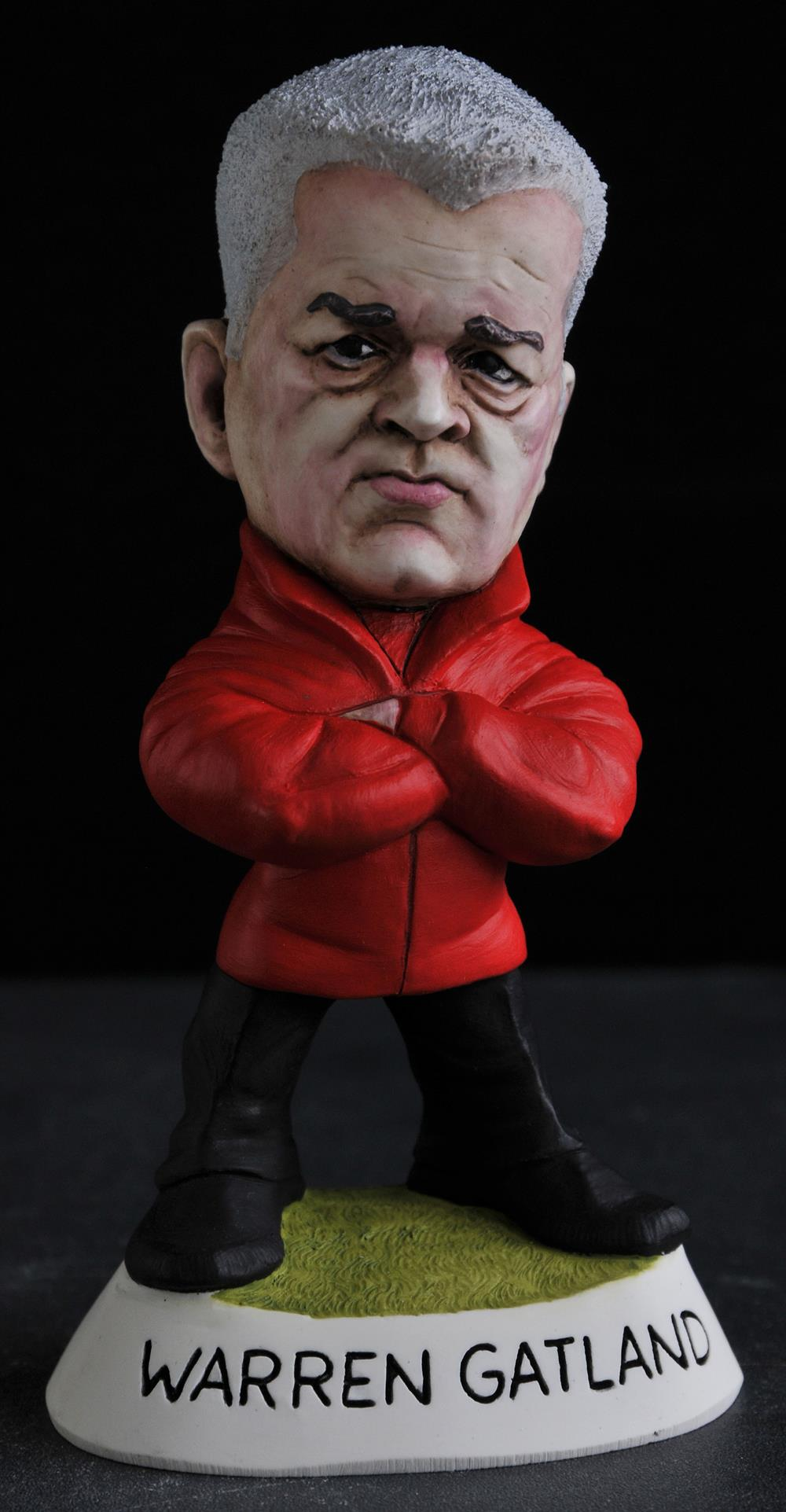 Mini Warren Gatland